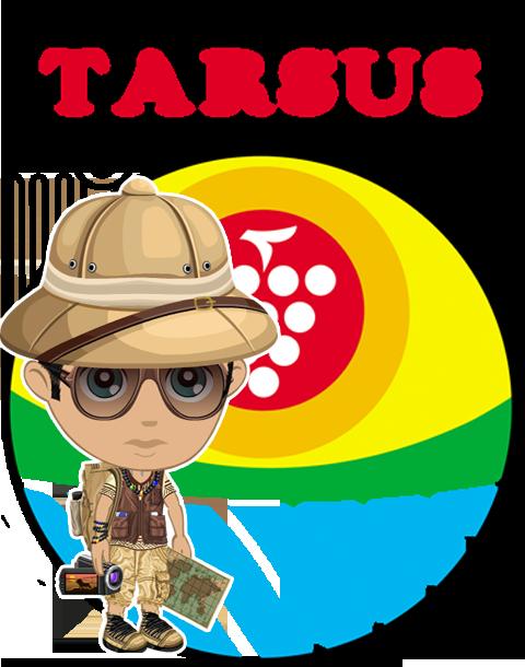 Tarsus Rehberi